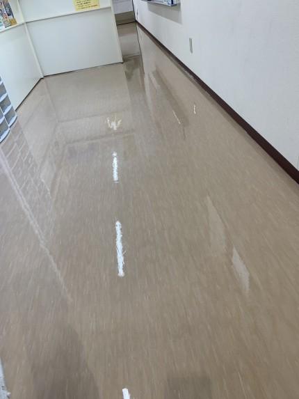 鹿児島市 床洗浄 ワックス作業