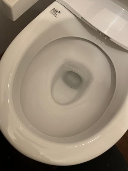 鹿児島市 トイレ 便器 水アカ