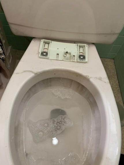 鹿児島市 トイレ お掃除