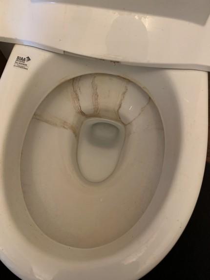 鹿児島市 トイレ 便器 掃除